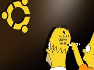 Insert Ubuntu here - D'oh!