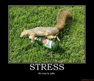 stress-squirrel-drunk